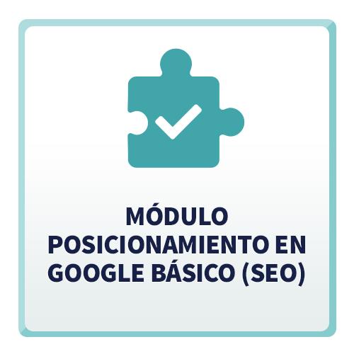 Módulo Posicionamiento en Google Básico (SEO)