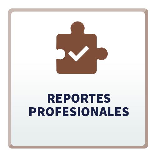 Reportes Profesionales